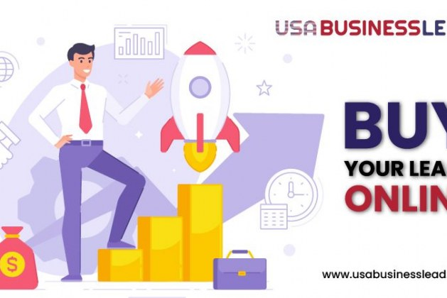 Usa-Businesslead-Cover