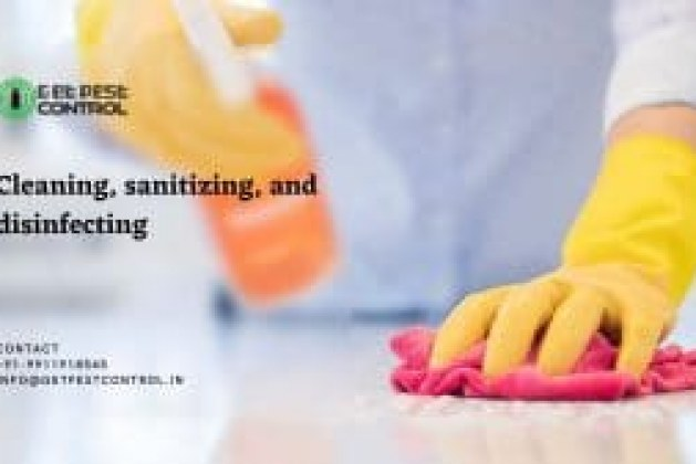 Cleaning, sanitizing, and disinfecting: what is the main difference