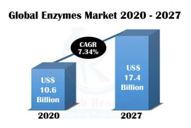 enzymes market 2020 – 2027