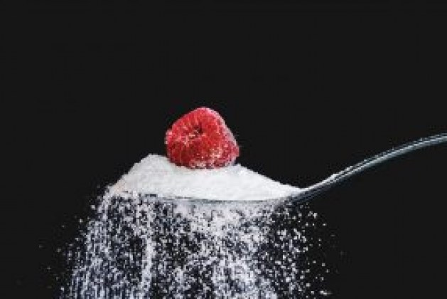 Knowledge on Erythritol